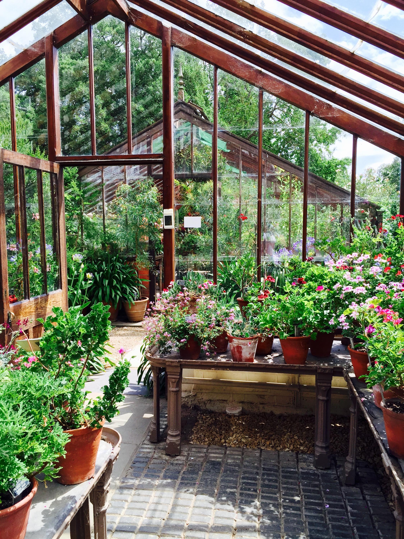 Chelsea Psychic Garden Cafe